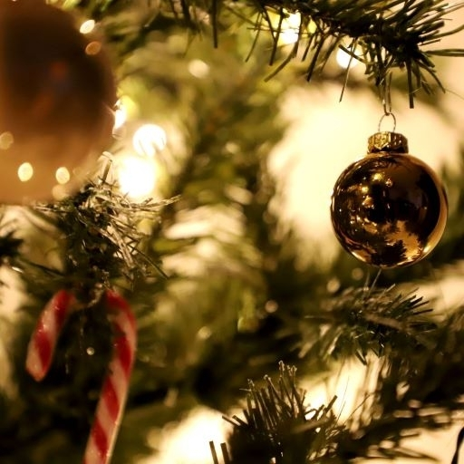 IPF's Christmas and New Year opening hours 2020